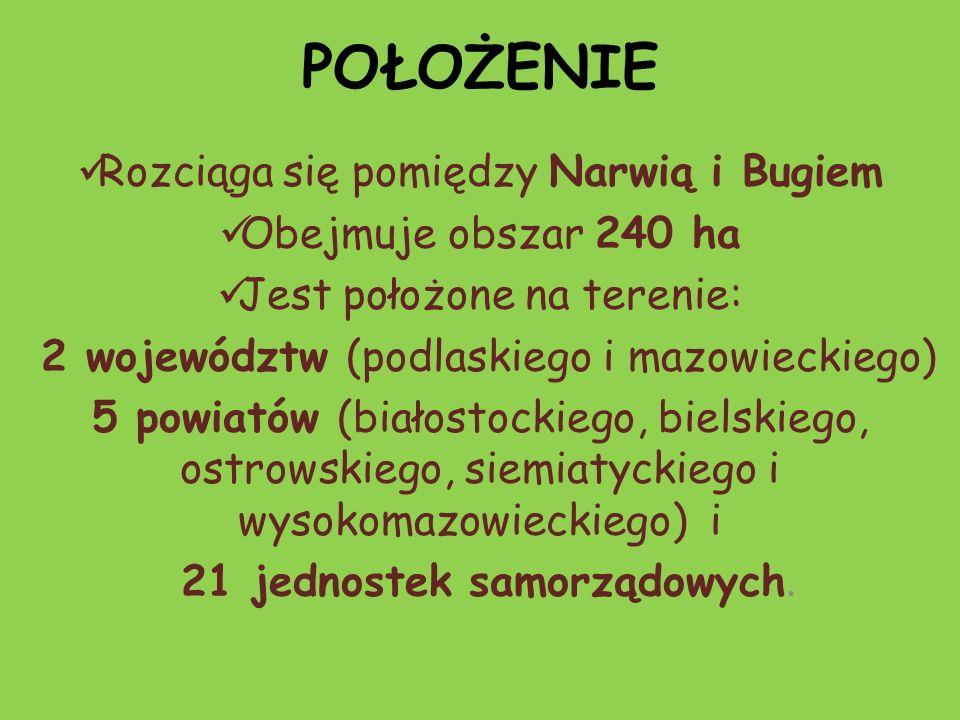 POŁOŻENIE Rozciąga się pomiędzy Narwią i Bugiem Obejmuje obszar 240 ha Jest położone na terenie: 2 województw (podlaskiego i mazowieckiego) 5 powiatów (białostockiego, bielskiego, ostrowskiego, siemiatyckiego i wysokomazowieckiego) i 21 jednostek samorządowych.