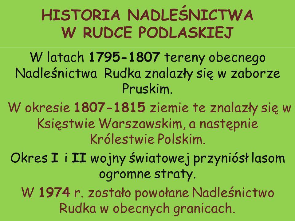 HISTORIA NADLEŚNICTWA W RUDCE PODLASKIEJ W latach 1795-1807 tereny obecnego Nadleśnictwa Rudka znalazły się w zaborze Pruskim.