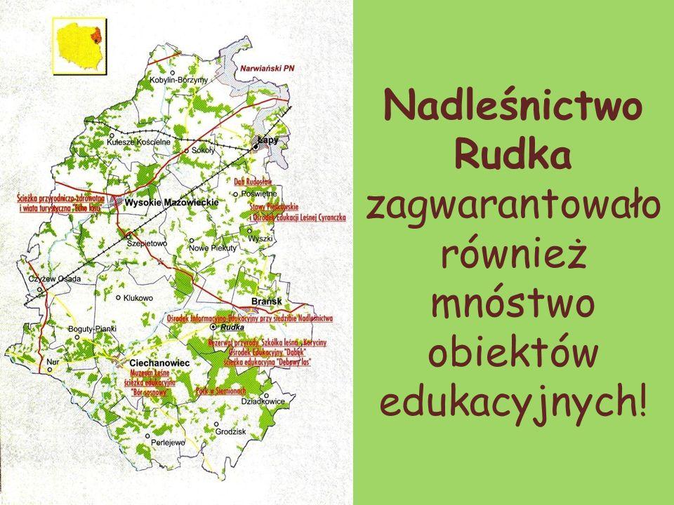 Nadleśnictwo Rudka zagwarantowało również mnóstwo obiektów edukacyjnych!