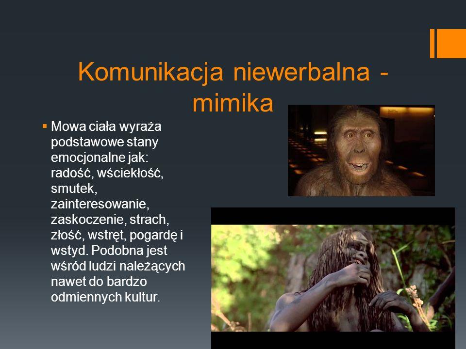 Komunikacja niewerbalna - mimika  Smutek