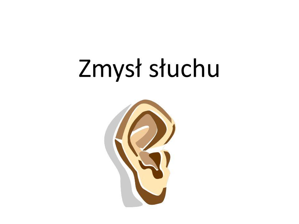 Zmysł słuchu – odgadywanie dźwięków W tym zadaniu mogą brać udział wszyscy członkowie drużyny.
