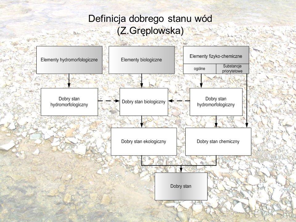 Definicja dobrego stanu wód (Z.Gręplowska)