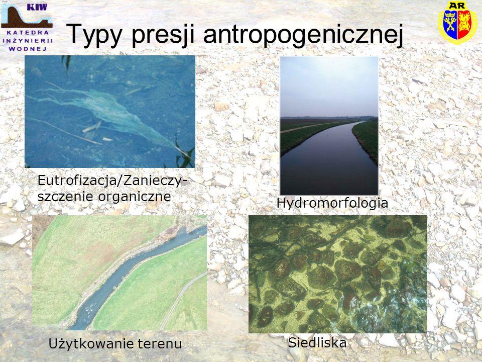 Typy presji antropogenicznej Eutrofizacja/Zanieczy- szczenie organiczne Użytkowanie terenu Hydromorfologia Siedliska