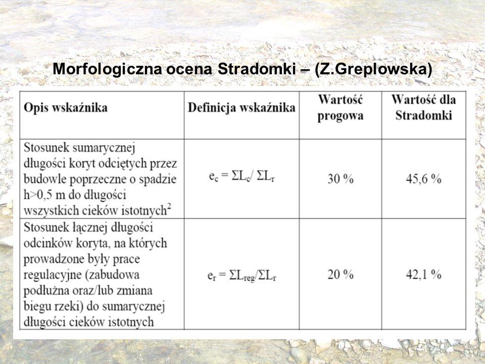 Morfologiczna ocena Stradomki – (Z.Greplowska)