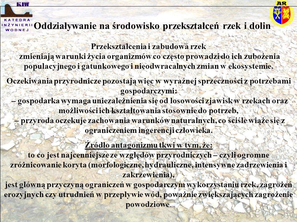 Definicja problemu (E.Nachlik)