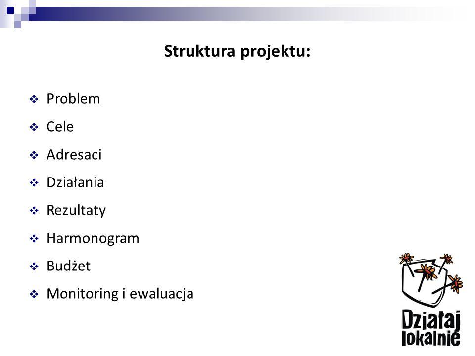 Struktura projektu:  Problem  Cele  Adresaci  Działania  Rezultaty  Harmonogram  Budżet  Monitoring i ewaluacja