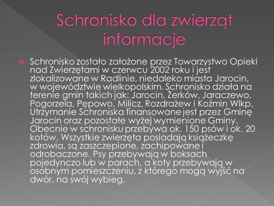  Schronisko zostało założone przez Towarzystwo Opieki nad Zwierzętami w czerwcu 2002 roku i jest zlokalizowane w Radlinie, niedaleko miasta Jarocin,