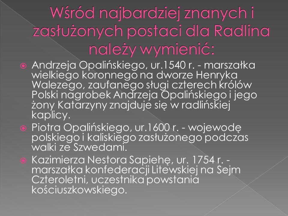  Andrzeja Opalińskiego, ur.1540 r. - marszałka wielkiego koronnego na dworze Henryka Walezego, zaufanego sługi czterech królów Polski nagrobek Andrze