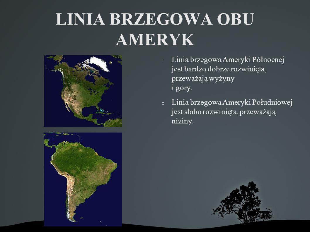 LINIA BRZEGOWA OBU AMERYK Linia brzegowa Ameryki Północnej jest bardzo dobrze rozwinięta, przeważają wyżyny i góry.