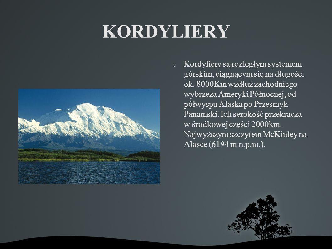 KORDYLIERY Kordyliery są rozległym systemem górskim, ciągnącym się na długości ok.