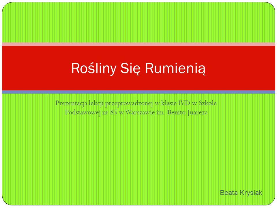 Prezentacja lekcji przeprowadzonej w klasie IVD w Szkole Podstawowej nr 85 w Warszawie im.