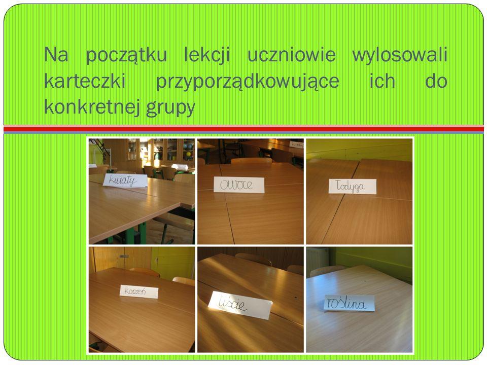 Na początku lekcji uczniowie wylosowali karteczki przyporządkowujące ich do konkretnej grupy