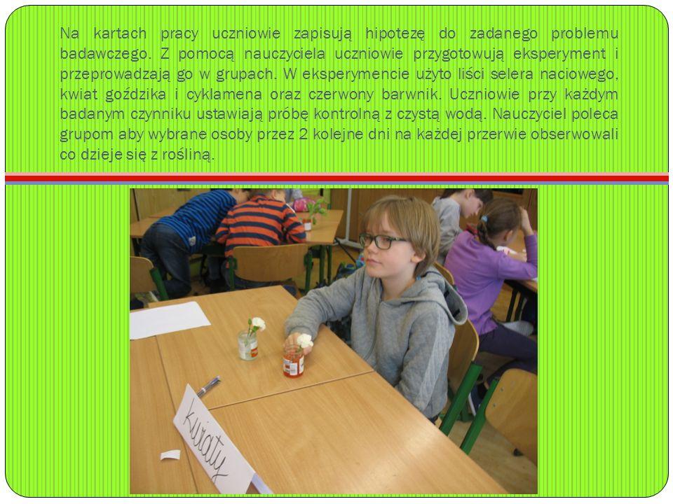 Na kartach pracy uczniowie zapisują hipotezę do zadanego problemu badawczego.