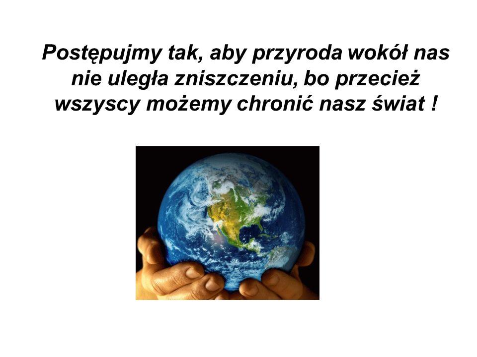 Postępujmy tak, aby przyroda wokół nas nie uległa zniszczeniu, bo przecież wszyscy możemy chronić nasz świat !