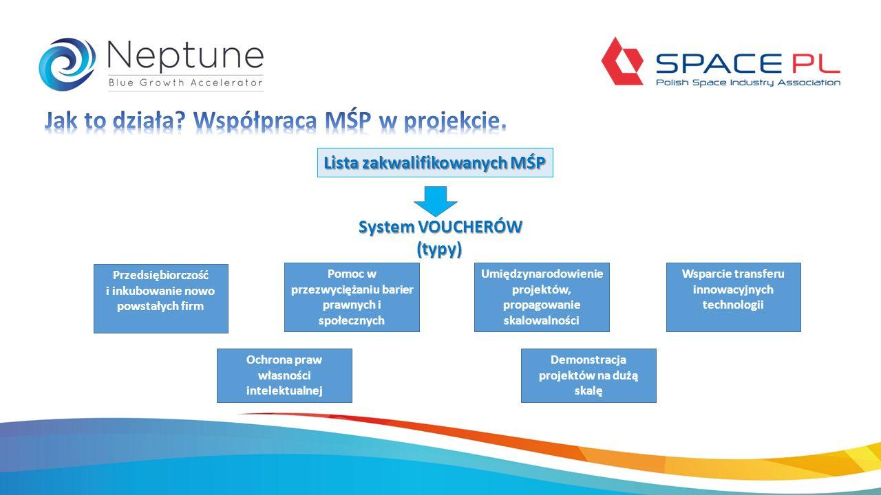 Lista zakwalifikowanych MŚP System VOUCHERÓW (typy) (typy) Ochrona praw własności intelektualnej Pomoc w przezwyciężaniu barier prawnych i społecznych Demonstracja projektów na dużą skalę Umiędzynarodowienie projektów, propagowanie skalowalności Przedsiębiorczość i inkubowanie nowo powstałych firm Wsparcie transferu innowacyjnych technologii