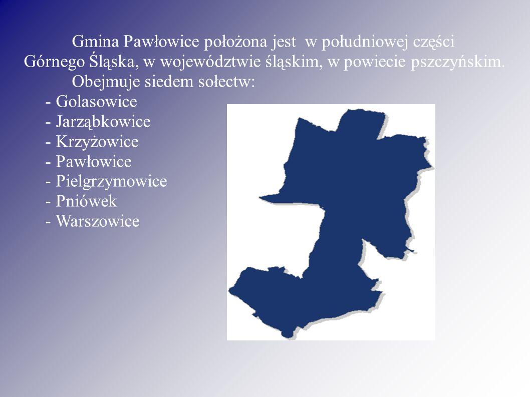 Gmina Pawłowice położona jest w południowej części Górnego Śląska, w województwie śląskim, w powiecie pszczyńskim.