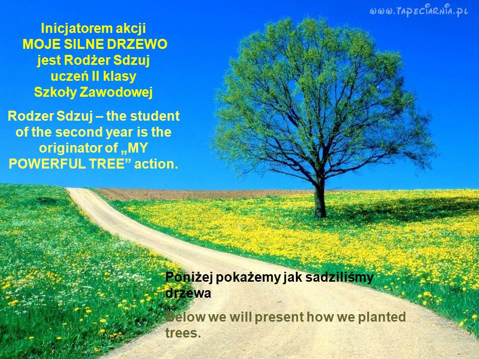 Choose the tree which will be planted on your behalf It will be your powerful tree and you will be given the certificate with your name.