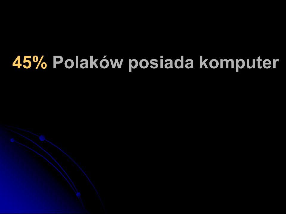 45% Polaków posiada komputer