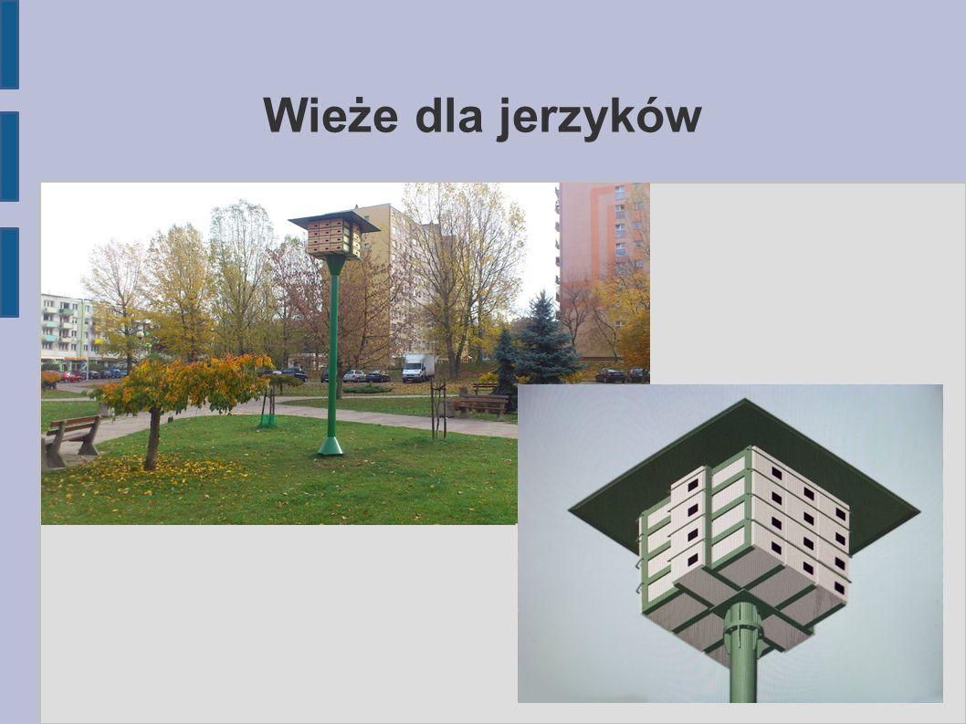 Wieże dla jerzyków
