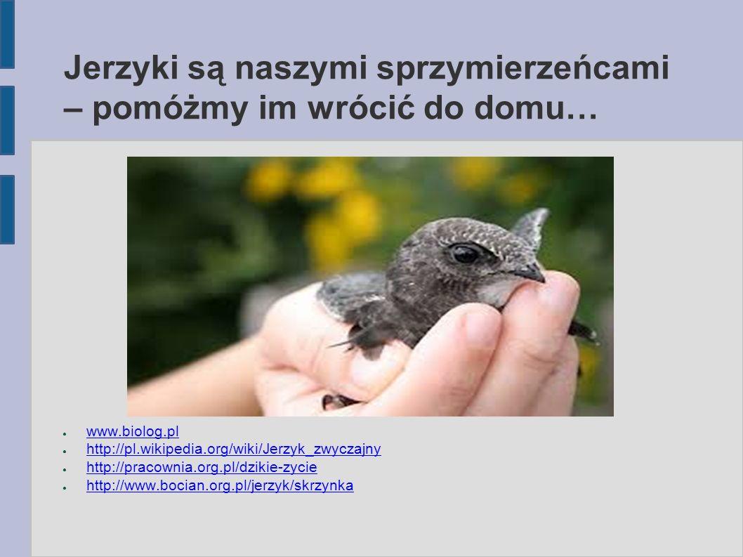 Jerzyki są naszymi sprzymierzeńcami – pomóżmy im wrócić do domu… ● www.biolog.pl www.biolog.pl ● http://pl.wikipedia.org/wiki/Jerzyk_zwyczajny http://pl.wikipedia.org/wiki/Jerzyk_zwyczajny ● http://pracownia.org.pl/dzikie-zycie http://pracownia.org.pl/dzikie-zycie ● http://www.bocian.org.pl/jerzyk/skrzynka http://www.bocian.org.pl/jerzyk/skrzynka