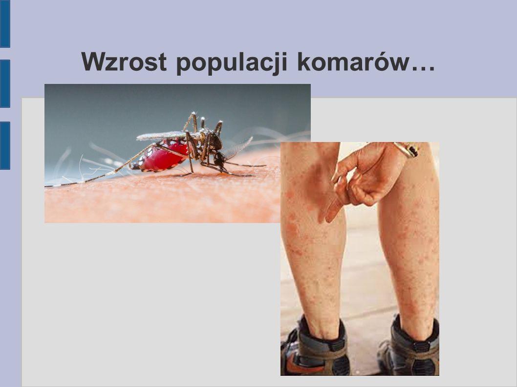 Wzrost populacji komarów…