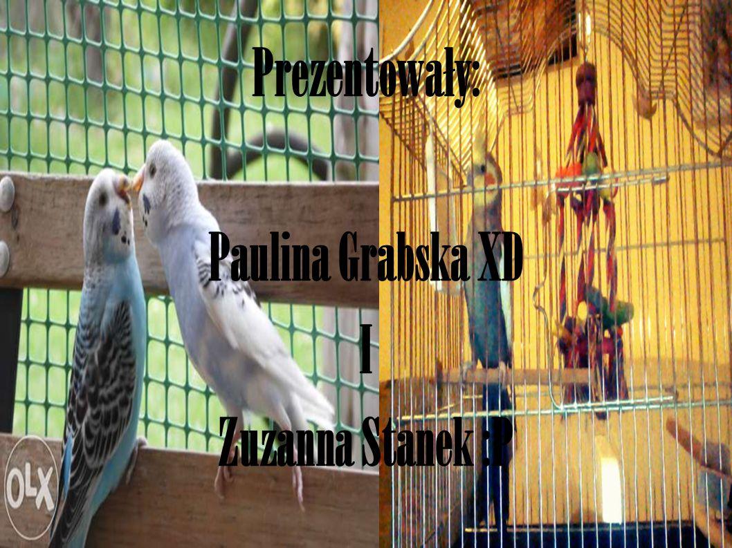 Prezentowały: Paulina Grabska XD I Zuzanna Stanek :P