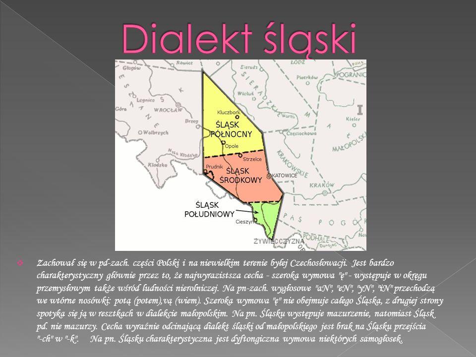  Zachował się w pd-zach.części Polski i na niewielkim terenie byłej Czechosłowacji.