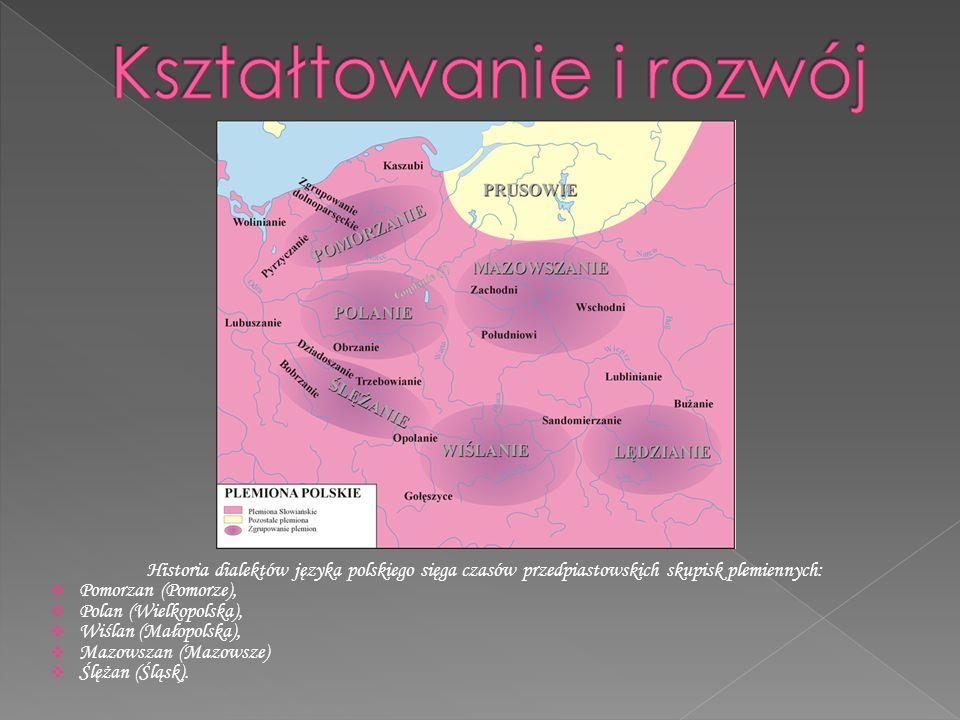 Historia dialektów języka polskiego sięga czasów przedpiastowskich skupisk plemiennych:  Pomorzan (Pomorze),  Polan (Wielkopolska),  Wiślan (Małopolska),  Mazowszan (Mazowsze)  Ślężan (Śląsk).