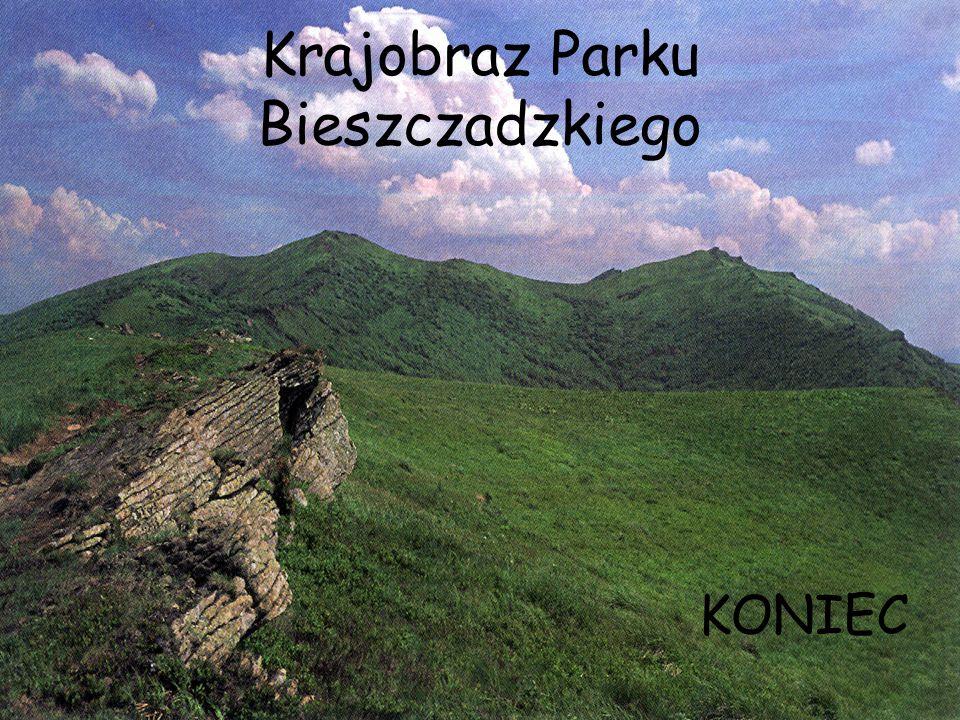 Krajobraz Parku Bieszczadzkiego KONIEC