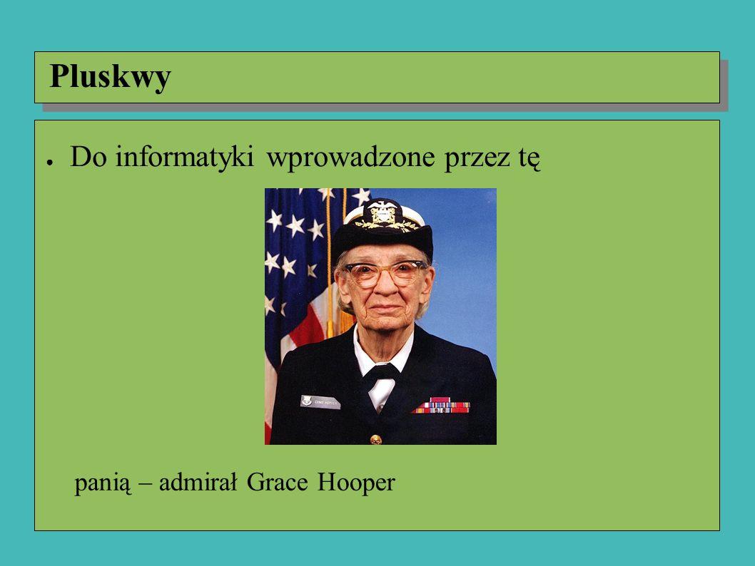 panią – admirał Grace Hooper Pluskwy