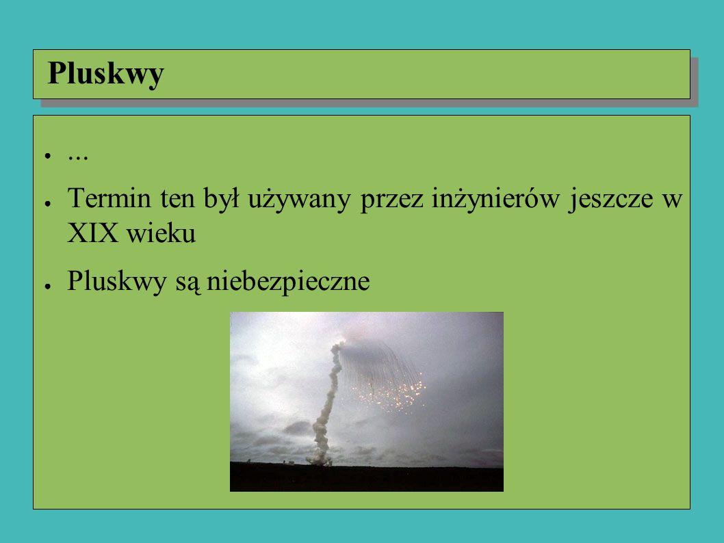 ●... ● Termin ten był używany przez inżynierów jeszcze w XIX wieku ● Pluskwy są niebezpieczne Pluskwy