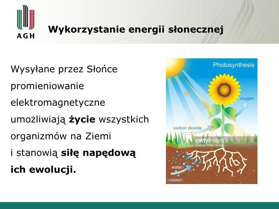 Wykorzystanie energii słonecznej Wysyłane przez Słońce promieniowanie elektromagnetyczne umożliwiają życie wszystkich organizmów na Ziemi i stanowią siłę napędową ich ewolucji.