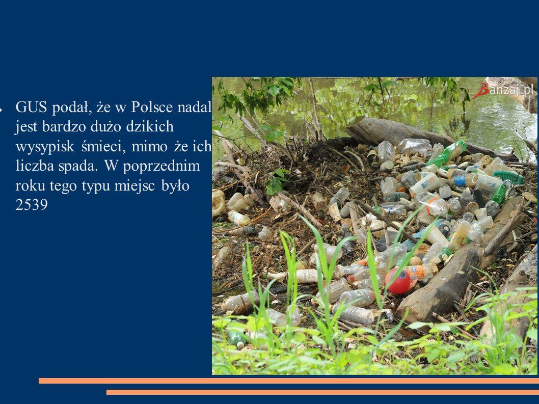 ● GUS podał, że w Polsce nadal jest bardzo dużo dzikich wysypisk śmieci, mimo że ich liczba spada.