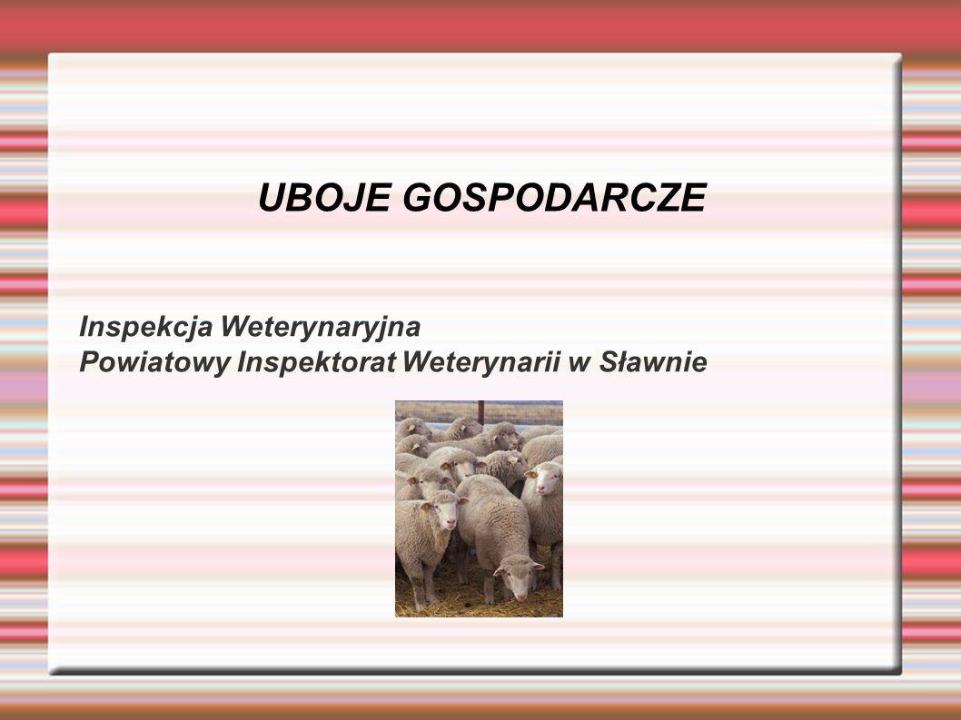 UBOJE GOSPODARCZE Inspekcja Weterynaryjna Powiatowy Inspektorat Weterynarii w Sławnie