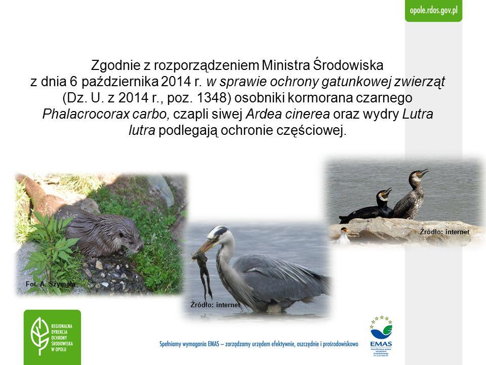 Zgodnie z rozporządzeniem Ministra Środowiska z dnia 6 października 2014 r.