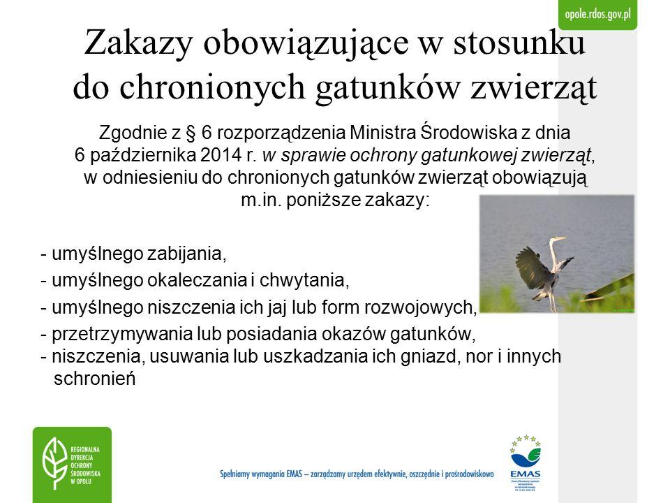 Zakazy obowiązujące w stosunku do chronionych gatunków zwierząt Osobnikom kormorana czarnego, czapli siwej w załączniku nr 2 do rozporządzenia Ministra Środowiska w sprawie ochrony gatunkowej zwierząt został przyporządkowany symbol (2).
