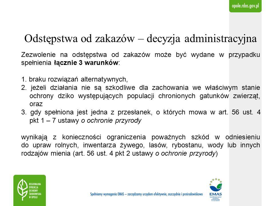 Podsumowanie Za rok 2014 w terminie określonym w zarządzeniu, tj.