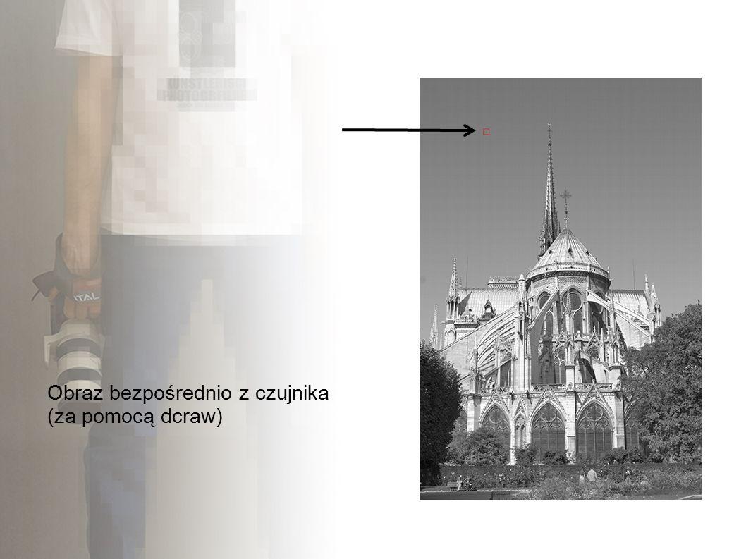 Obraz bezpośrednio z czujnika (za pomocą dcraw)