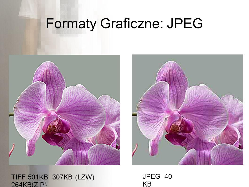 Formaty Graficzne: JPEG JPEG 40 KB TIFF 501KB 307KB (LZW) 264KB(ZIP)