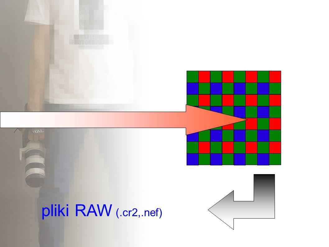 pliki RAW (.cr2,.nef)