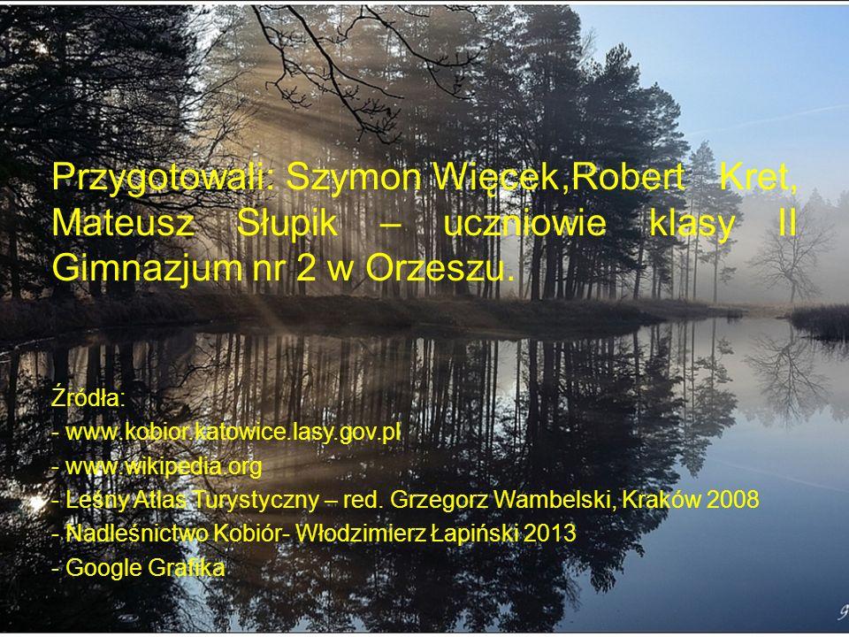 Przygotowali: Szymon Więcek,Robert Kret, Mateusz Słupik – uczniowie klasy II Gimnazjum nr 2 w Orzeszu.