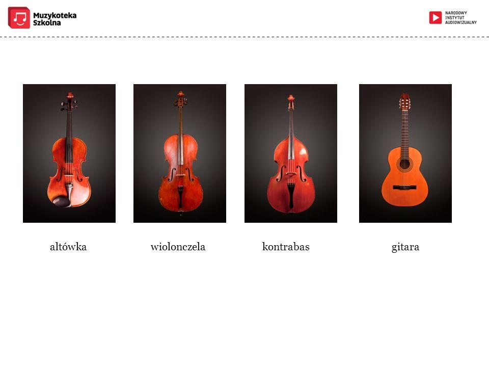 altówka wiolonczela kontrabas gitara
