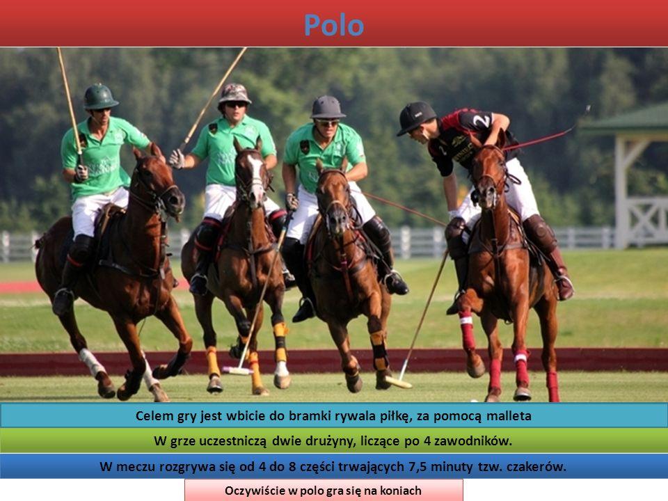 Polo Celem gry jest wbicie do bramki rywala piłkę, za pomocą malleta W grze uczestniczą dwie drużyny, liczące po 4 zawodników. W meczu rozgrywa się od