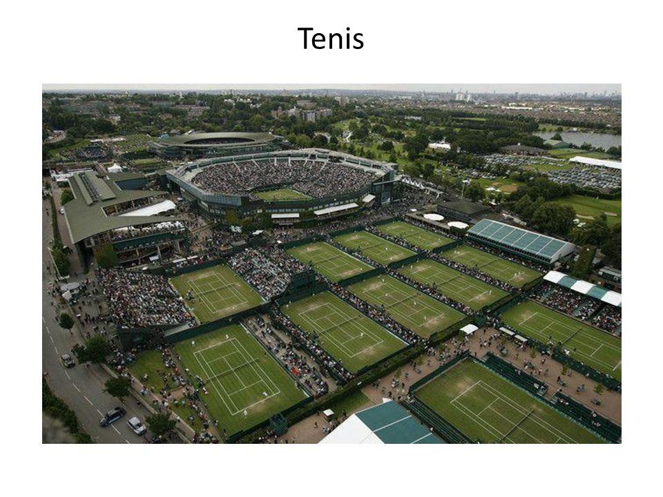Tenis ziemny jest grą indywidualną, rozgrywaną na korcie.