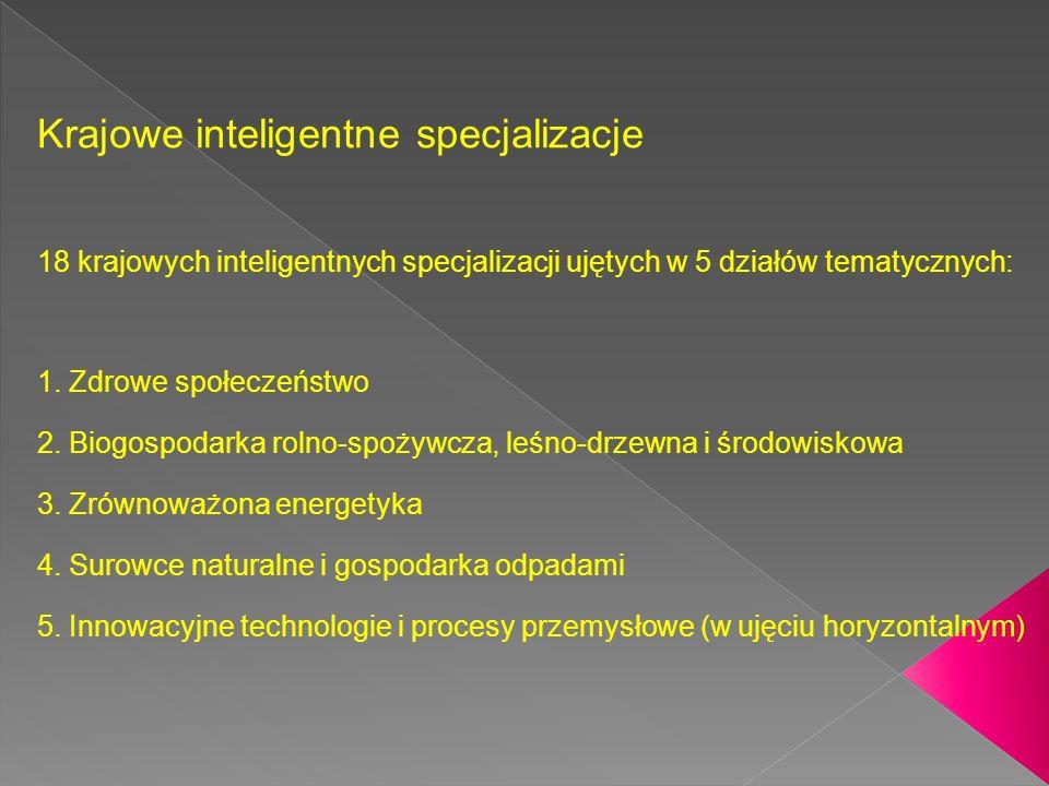 Krajowe inteligentne specjalizacje 18 krajowych inteligentnych specjalizacji ujętych w 5 działów tematycznych: 1.