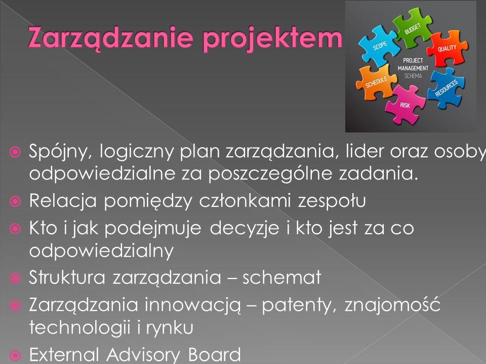 Spójny, logiczny plan zarządzania, lider oraz osoby odpowiedzialne za poszczególne zadania.