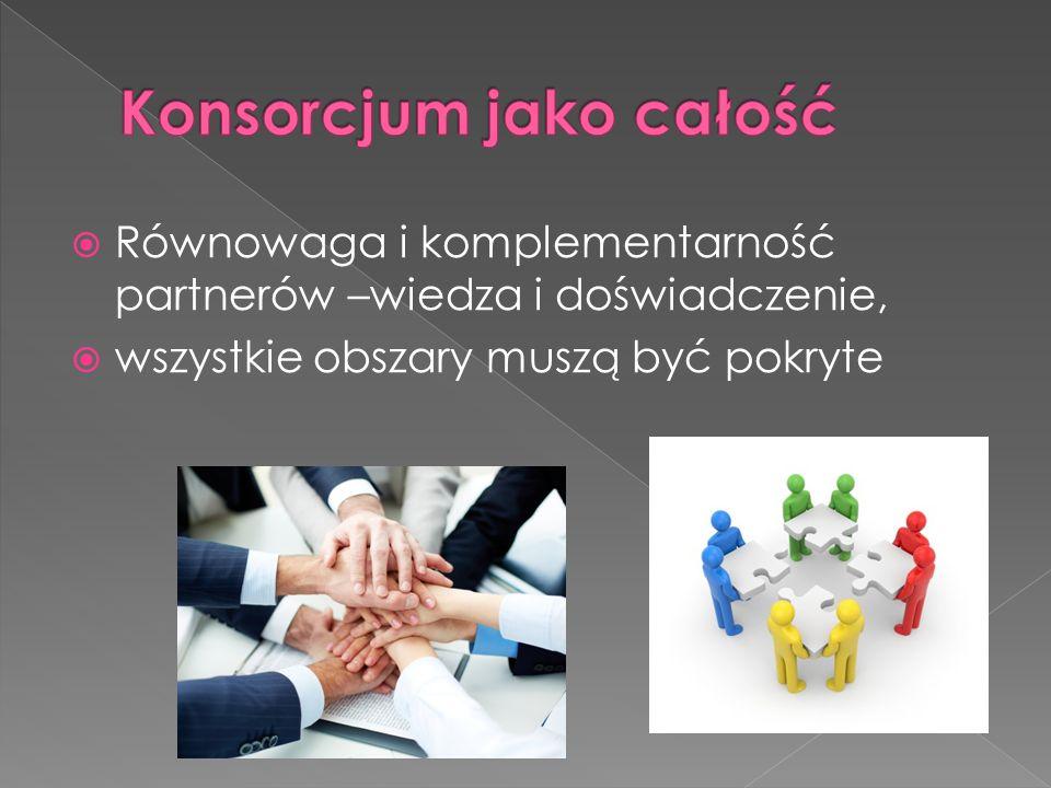  Równowaga i komplementarność partnerów –wiedza i doświadczenie,  wszystkie obszary muszą być pokryte