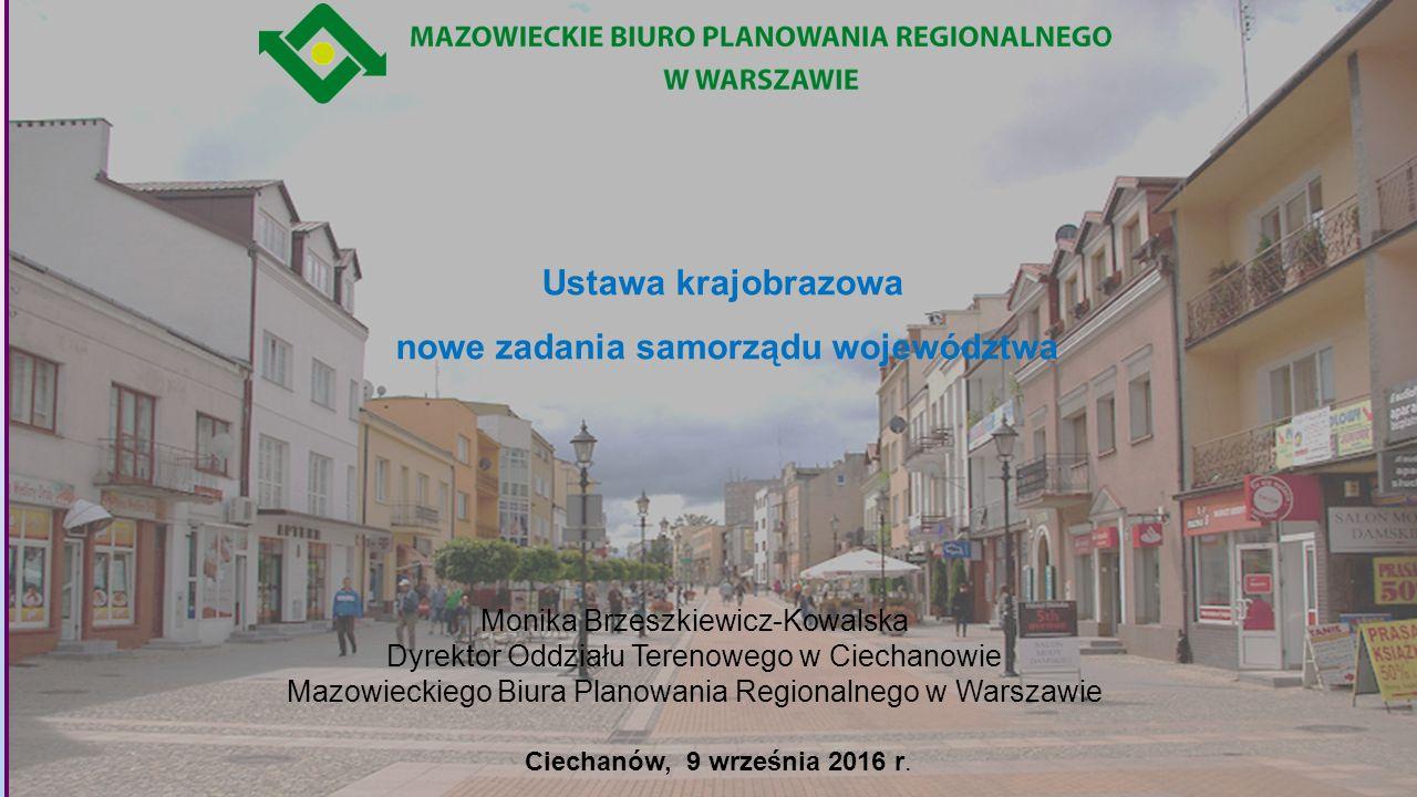 Zawłaszczona przez reklamę polska przestrzeń publiczna Źródło: https://www.google.pl/#q=chaos+reklamowy