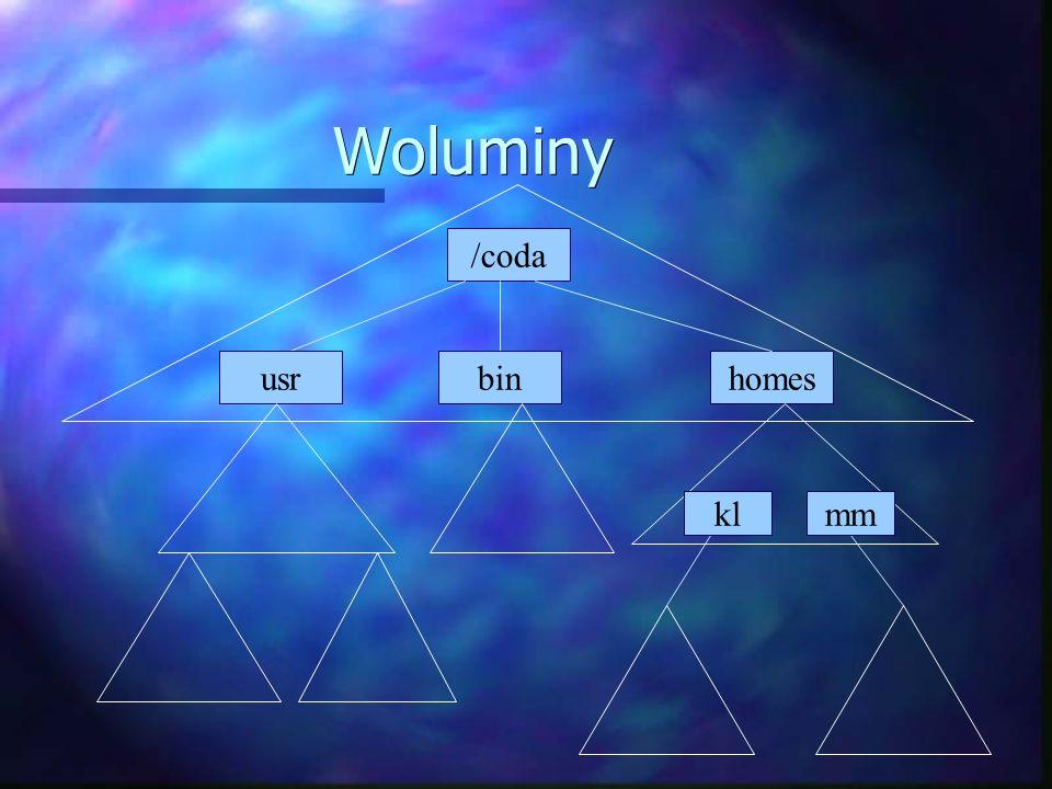 Woluminy /coda usrhomesbin klmm