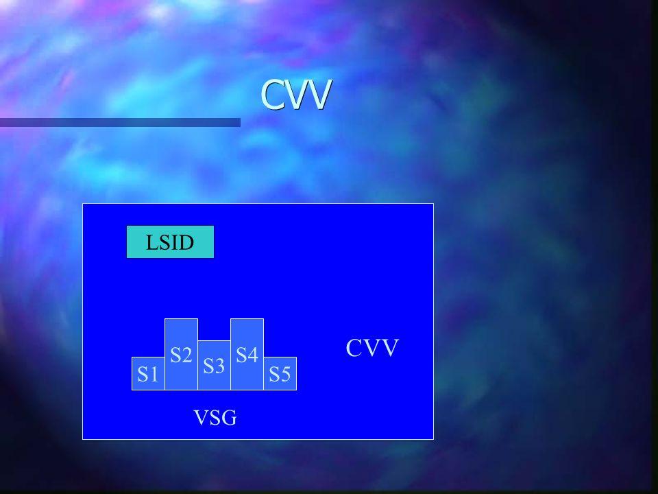 CVV LSID S1 S2 S3 S4 S5 VSG CVV